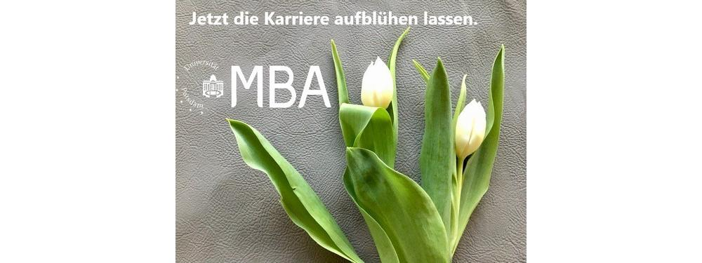 Online-Infoveranstaltung zum Master of Business Administration (MBA) an der Universität Potsdam (Webinar   Online)