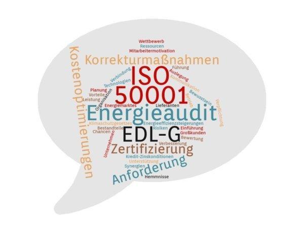 Wozu von einem Energieaudit gemäß EDL-G auf die ISO 50001 wechseln? (Seminar | Online)